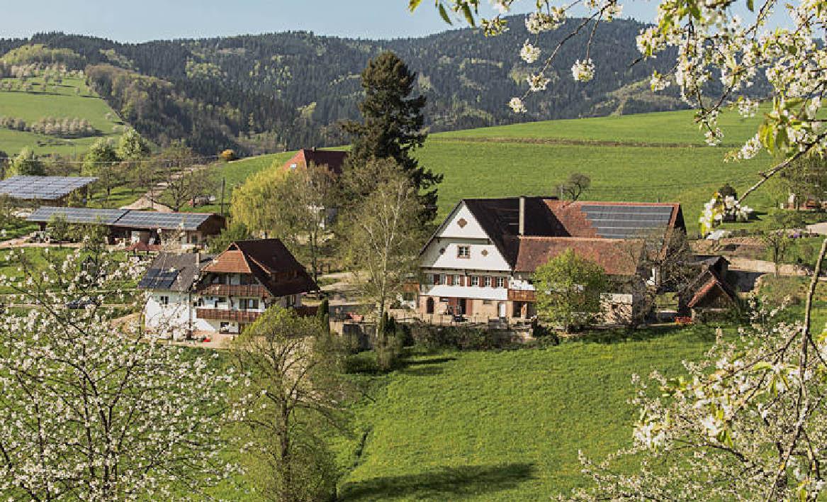 Breigenhof Hofladen14
